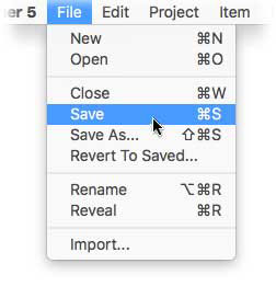Saving a Project